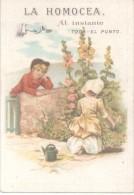 DENGUE DIARREA INFLUENZA GRIPPE HEMORROIDES HEMORRHOIDAS CATARROS - LA HOMOCEA AÑO 1899 TARJETAS AVISO RARISIME - Advertising