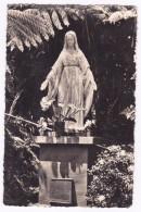 LA REUNION Vierge Du Brulé à  SAINT FRANCOIS - La Réunion