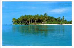 Asie - Maldives Coconut Palms Set In Cool Aquamarine - Maldives