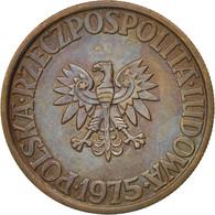 Pologne, 5 Zlotych, 1975, Warsaw, SUP, Brass, KM:81.1 - Poland