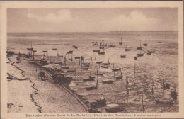 17-ESNANDES-L'Arrivée Des Boucholeurs à Marée Montante   Animé  (pli) - France