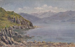 10346-GHIFFA(VERBANIA)-LA PUNTA DEL CAVALLO-1915-FP - Verbania