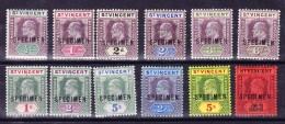 """St Vincent 1902/11 SG#76-84s Und 91-93s Komplett 12 Marken Mit Aufdruck """"Specimen"""" - St.Vincent (...-1979)"""