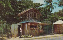 Jamaica Luquillo Beach Fruit Vendors Row