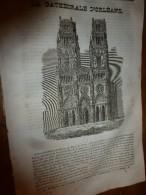 1833 LM :Cathédrale D'ORLEANS (gravure ); L'Eider; Hospice De La Salpétrière (gravure Sur 1/2 Page); Le POIVRIER (grav) - Vieux Papiers