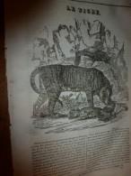 1833 LM :Le TIGRE ; Le Panthéon (Eglise Ste-Geneviève);Le Terrifiant PONT Du DIABLE (Suisse-Italie); L'ARIOSTE (poète) - Vieux Papiers