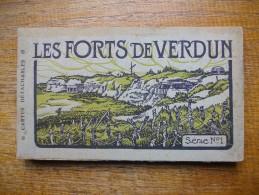 Ancien Carnet Des Forts De Verdun De 20 Cartes - Verdun