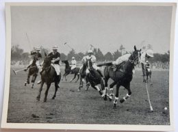 VIGNETTE JEUX OLYMPIQUES J.O BERLIN OLYMPIA 1936 PET CREMER DUSSELDORF BILD 63 POLO ARGENTINE ENGLAND - Trading Cards