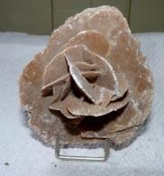 BELLE ROSE DES SABLES ? 7.5 X 7.5 X 4.5  Cm Environ 98 Grammes : TBE  Livré Avec Support - Minerals