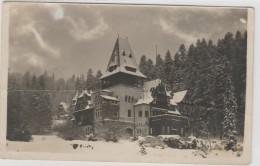 Romania - Sinaia - Castelul Pelisor - Rumänien