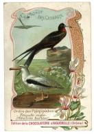 Chromo Chocolat Aiguebelle, Le Monde Des Oiseaux - Ordre Des Palmipèdes, Frégate Aigle Albatros Hurleur - Aiguebelle