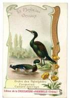 Chromo Chocolat Aiguebelle, Le Monde Des Oiseaux - Ordre Des Palmipèdes, Cormoran, Canard Sauvage - Aiguebelle