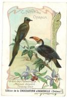 Chromo Chocolat Aiguebelle, Le Monde Des Oiseaux - Ordre Des Passereaux, Toucan Toco, Motmot ... - Aiguebelle