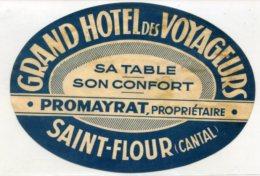 FRANCE, Saint Flour, Cantal - Grand Hotel Des Voyageurs - Luggage Label - (538) - Etiquettes D'hotels