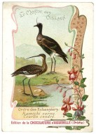 Chromo Chocolat Aiguebelle - Le Monde Des Oiseaux - Ordre Des échassiers, Kamachi Cornu, Courlis Cendré - Aiguebelle