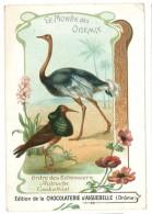 Chromo Chocolat Aiguebelle - Le Monde Des Oiseaux - Ordre Des échassiers, Autruche, Combattant - Aiguebelle