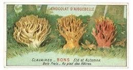Chromo Chocolat Aiguebelle - Champignons - Clavaires ( Bons ) - Aiguebelle