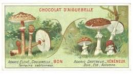Chromo Chocolat Aiguebelle - Champignons - Agaric / Agaric Dartreux ... - Aiguebelle