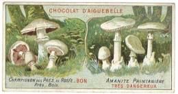 Chromo Chocolat Aiguebelle - Champignons - Amanite Printanière / Champignon Des Près - Aiguebelle