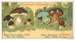 Chromo Chocolat Aiguebelle - Champignons - Bolet Tête De Nègre / Bolet Pernicieux - Aiguebelle