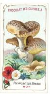 Chromo Chocolat Aiguebelle - Champignons - Polypore Des Brebis - Aiguebelle