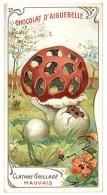 Chromo Chocolat Aiguebelle - Champignons - Clathre Grillagé - Aiguebelle