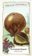 Chromo Chocolat Aiguebelle - Champignons - Scléroderme Vulgaire - Aiguebelle