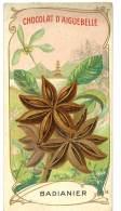 Chromo Chocolat Aiguebelle - Badianier ( Originaire De La Chine ) - Aiguebelle