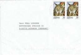 L-FEL51 - ESPAGNE Lettre Pour Hofhein Allemagne Thème Lynx - Big Cats (cats Of Prey)