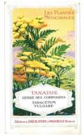 Chromo Chocolat Aiguebelle - Les Plantes Médicinales - Tanaisie - Aiguebelle