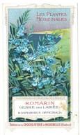 Chromo Chocolat Aiguebelle - Les Plantes Médicinales - Romarin - Aiguebelle