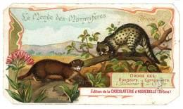 Chromo Chocolat Aiguebelle - Le Monde Des Mammifères - Afrique, Carnassiers, Civette D'Afrique .. - Aiguebelle