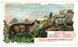 Chromo Chocolat Aiguebelle - Le Monde Des Mammifères - Amérique Du Sud, Carnassiers, Chinchilla Vulgaire,chat Des Pampas - Aiguebelle