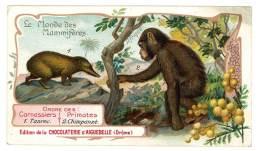 Chromo Chocolat Aiguebelle - Le Monde Des Mammifères - Afrique, Primates, Chimpanzé, Tanrec Soyeux - Aiguebelle