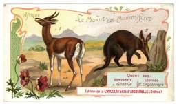 Chromo Chocolat Aiguebelle - Le Monde Des Mammifères - Afrique, Gazelle, Oryctérope - Aiguebelle