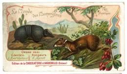 Chromo Chocolat Aiguebelle - Le Monde Des Mammifères - Amérique, L'agouti Commun, L'apar Mataco - Aiguebelle