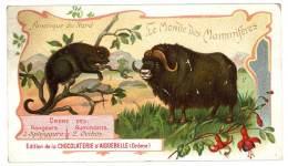 Chromo Chocolat Aiguebelle - Le Monde Des Mammifères - Amérique Du Nord, Ovibos Musqué, Sphiggure Mexicain - Aiguebelle