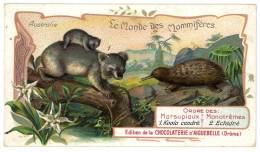 Chromo Chocolat Aiguebelle - Le Monde Des Mammifères - Australie, Marsupiaux ( Koala ), échidné - Aiguebelle
