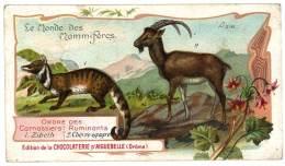 Chromo Chocolat Aiguebelle - Le Monde Des Mammifères - Asie, Chèvre égagre, La Zibeth - Aiguebelle