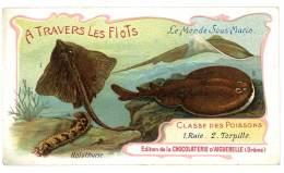 Chromo Chocolat Aiguebelle - à Travers Les Flots - Le Monde Sous-marin, Poissons, Raie, Torpille - Aiguebelle