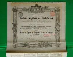 T-CBE SA Des Produits Vegetaux Du Haut - Kassai Congo Belge 1898 N.20666 - Actions & Titres