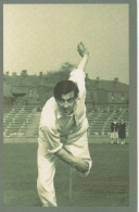 Nostalgia Postcard Modern -freddie Trueman 1953 - Cricket