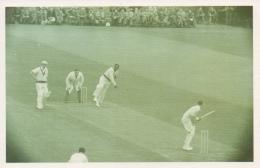 Nostalgia Postcard Modern -fine Weather Cricketers 1950 - Cricket