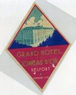 FRANCE, Limonges - Grand Hotel Et Tonneau D' Or - Luggage Label - (543) - Etiquettes D'hotels