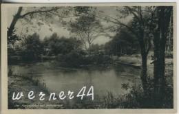 Hollenstedt V. 1955  Im Aarbachtal Mit Der Holzbrücke Bei Hollenstedt   (38580) - Hollenstedt