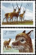 China 2003-12 Tibetan Antelope Stamps - Animal Deer - 1949 - ... République Populaire