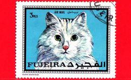 FUJEIRA - Usato - 1970 - Gatti - Cat Breed - Posta Aerea - 3 - Fujeira