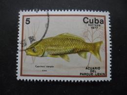 CUBA N°1995 Oblitéré - Cuba
