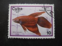 CUBA N°1996 Oblitéré - Cuba
