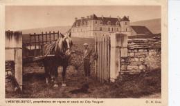 DIJON - L'HÉRITIER-GUYOT, Propriétaires De Vignes Et Cassis Au Clos Vougeot  (HL-c808)  Neuve - Voir Scan Recto/verso - Dijon